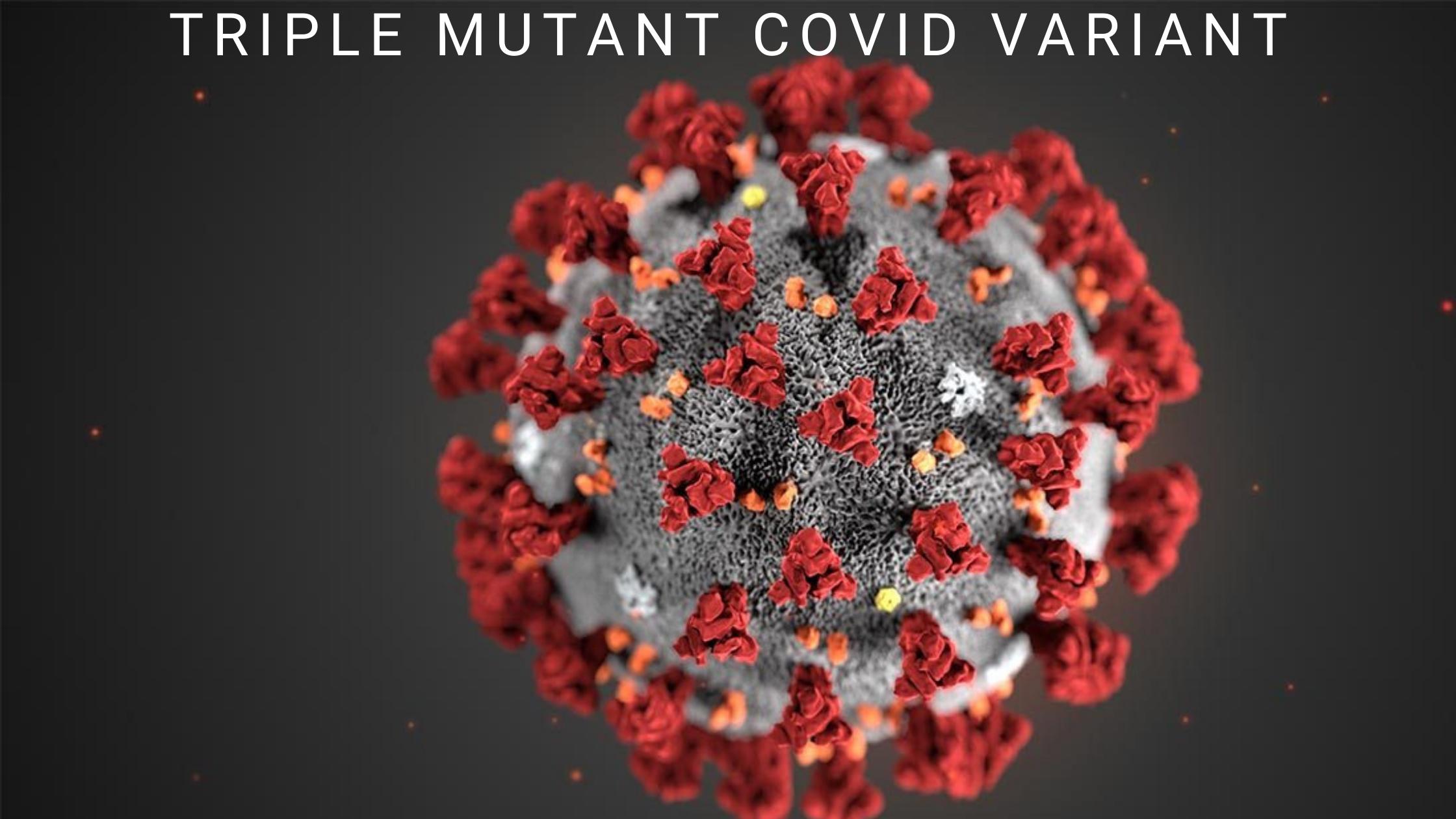 triple mutant covid variant